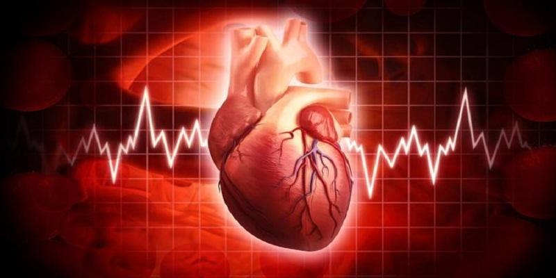 #Cardiologia