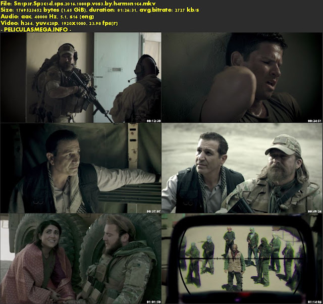 Descargar Sniper: Special Ops Subtitulado por MEGA.