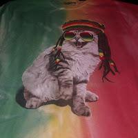 Protecting reggae – Cultural heritage needs IP