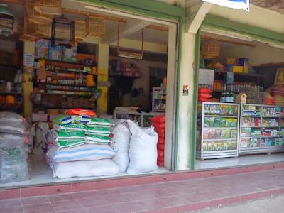 Jenis Usaha Perniagaan di Desa