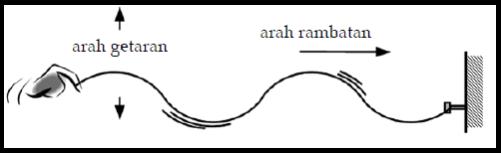 Pengertian Gelombang Transversal Dan Longitudinal
