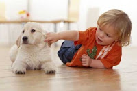 Teach children Caring for Pets