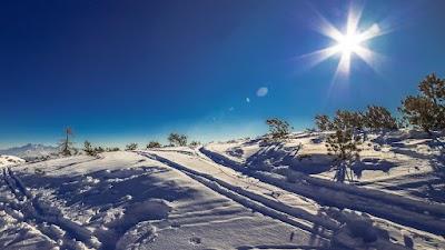 Snowy Magical Landscape