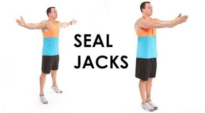 seal jack exercise
