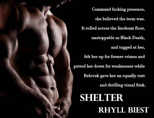 Book Tour - Shelter by Rhyll Biest