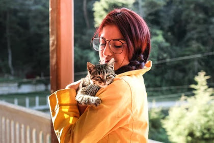 Using Multiple Pets to Find Pet Health Insurance for a Low Cost