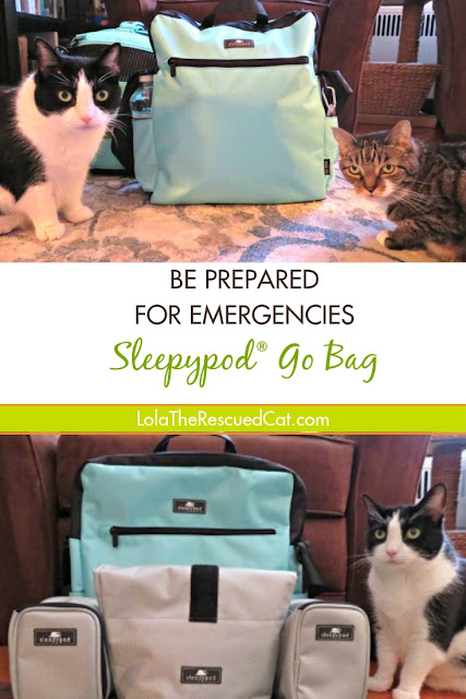 Sleepypod Go Bag|Disaster Preparedness