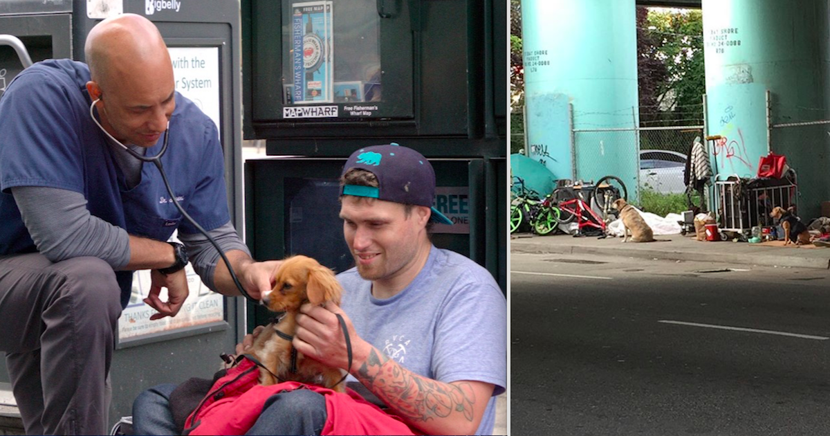 This Street Vet In California Treats The Pets Of Homeless People For Free