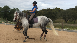 Riitta reissaa, Horsexplore, Portugal, Pero Viegas, working equitation, Riitta kosonen