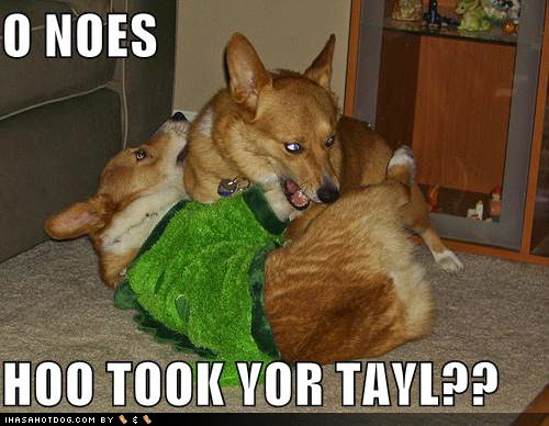 Funny Dogs Without Words Rules of the Ju...