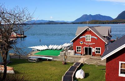 Pacific Rim Tofino Whale Festival auf Vancouver Island