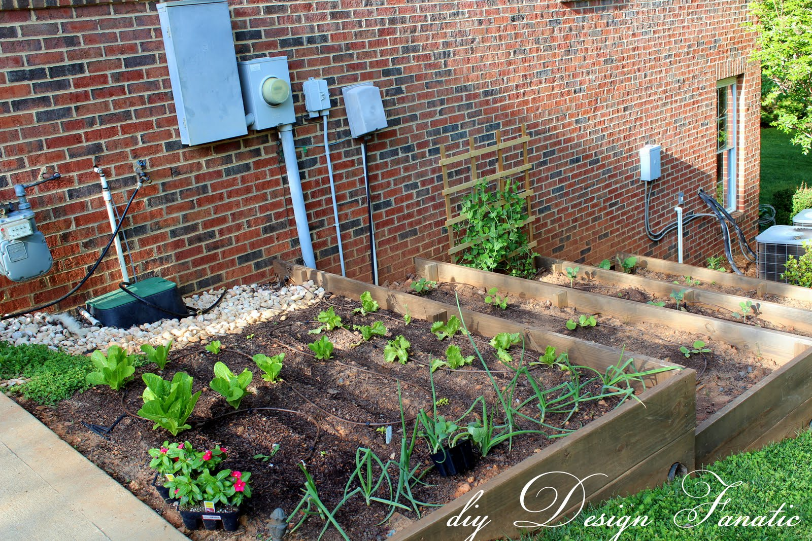 There You Have It Hope You Enjoyed Your Tour Of Our Expanded Raised Bed Vegetable Garden This