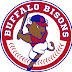 Bisons pound out 18 hits in 9-7 win