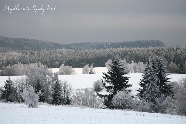 Pasterka, w której znajduje się Mydlarnia Rudy Kot w pięknej, zimowej szacie