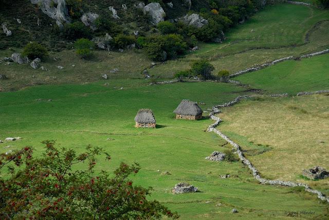 Teitos en pradera Goibarar Parque Natural Somiedo Asturias
