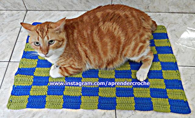 gato croche Judelau