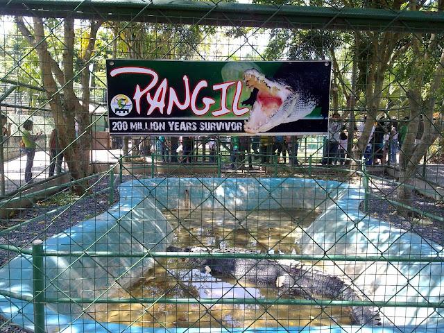 Davao City Destinations; Davao Crocodile Park