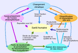http://combatdetous.blogspot.be/p/sante-somatique-corrigee-du-cher-ami-et_1.html