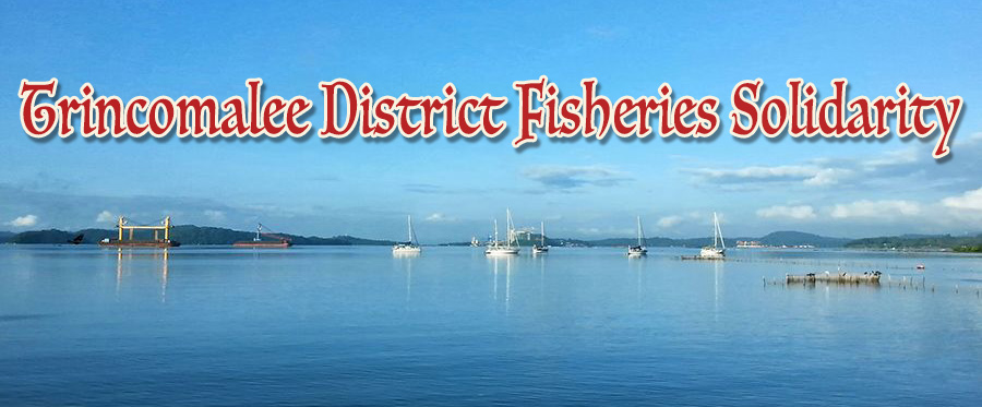 Trincomalee District Fisheries Solidarity