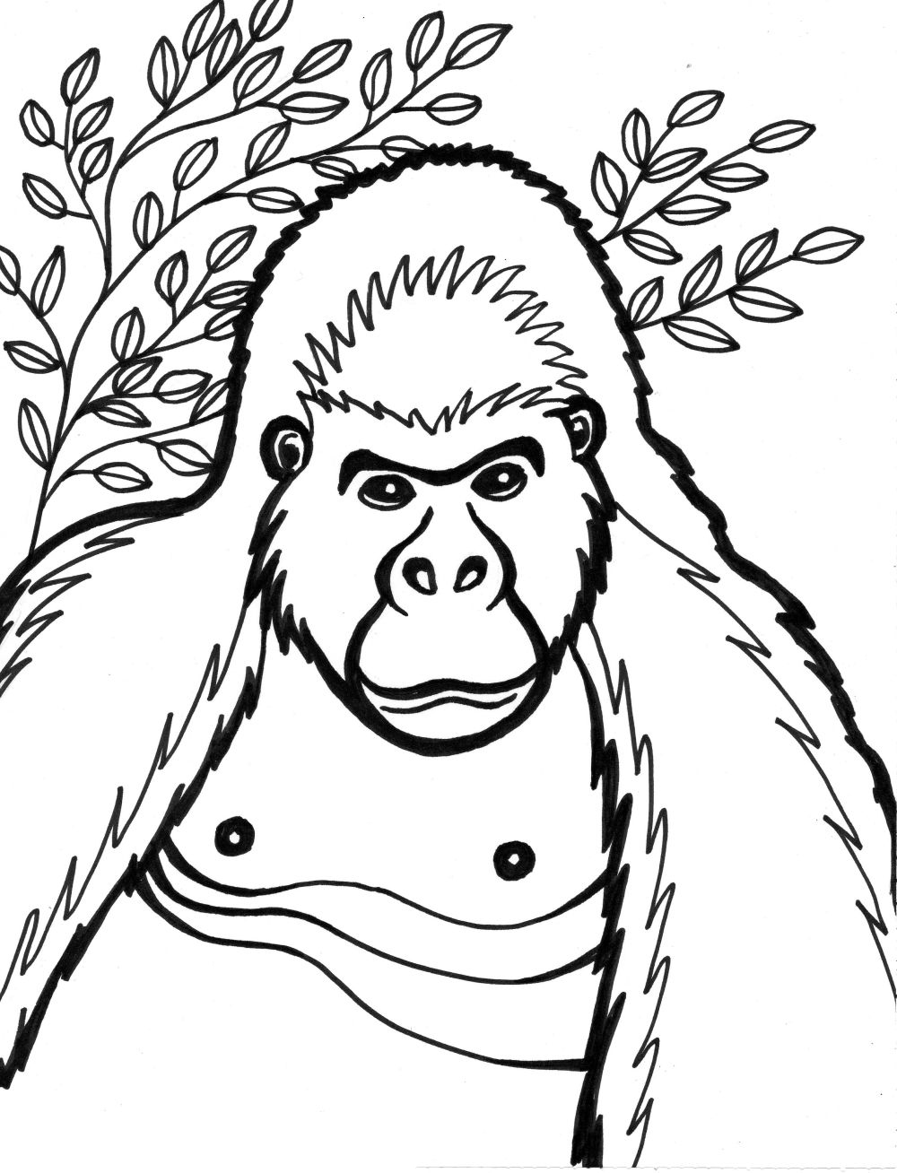 Gorrilla Coloring Page That Are Dramatic Leroy Website