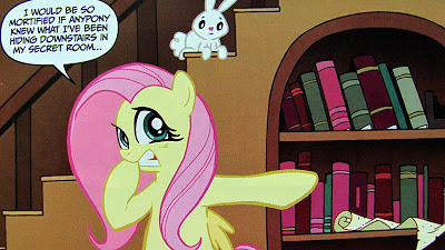 Fluttershy prepares to visit her secret room