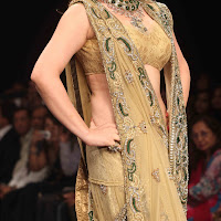 Glorious ornamental Zarine khan at iijw