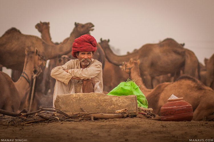 Pushkar Fair 2016.