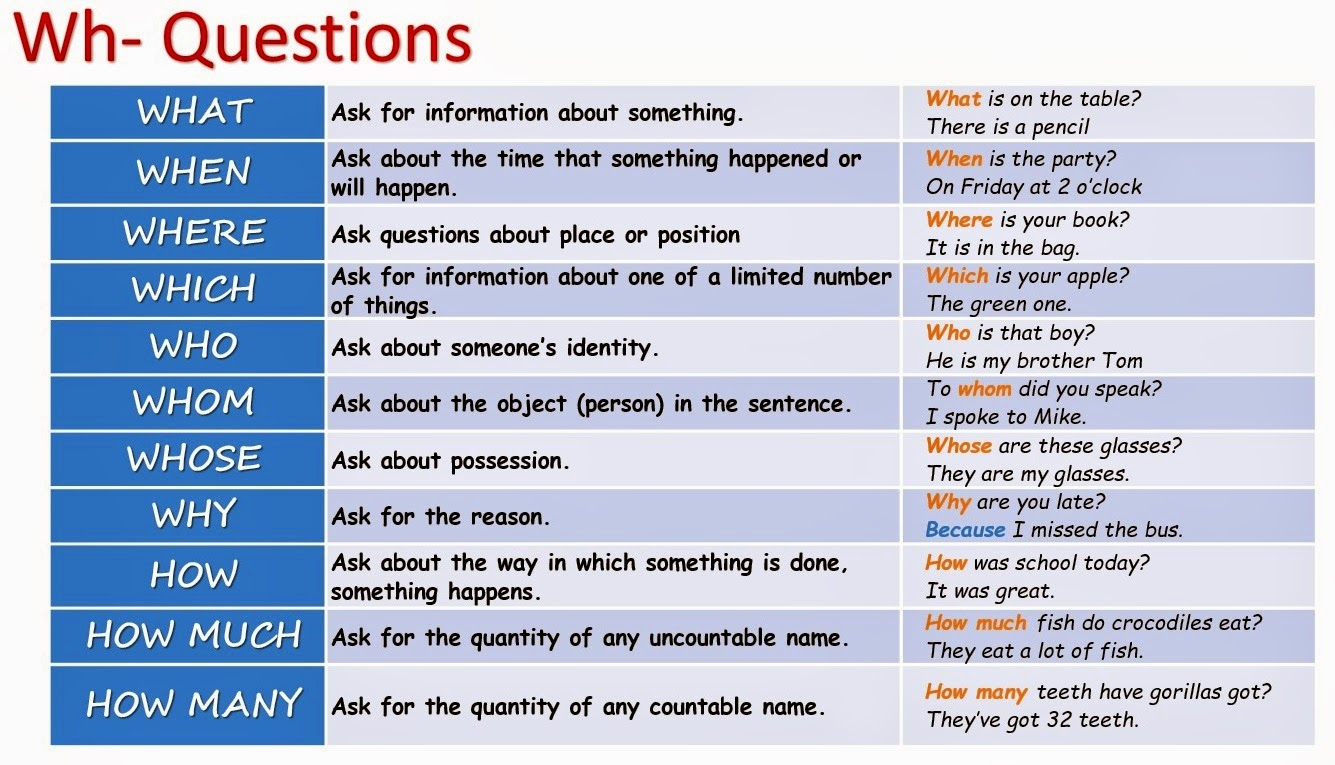 Interactive English Grammar Exercises Online