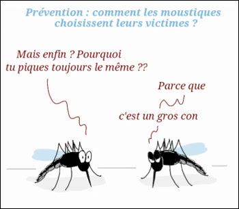 Les moustiques choisissent leurs cibles