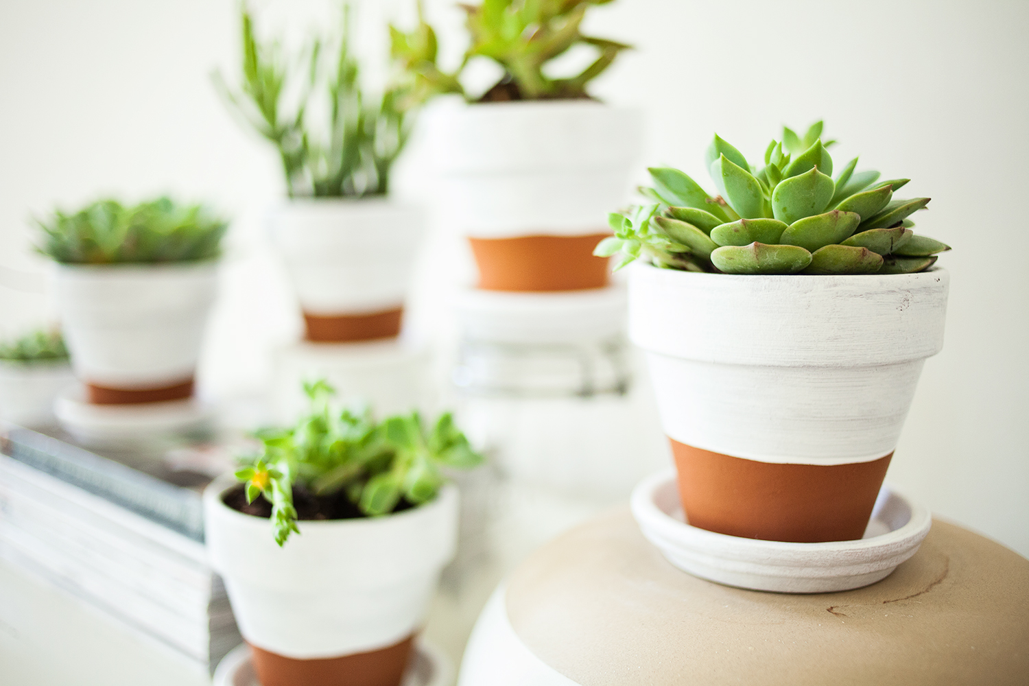 13 fun ways to decorate your flower pots