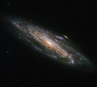 Spiral Galaxy NGC 5559