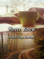 Never Knew (Maria Elena Martinez)