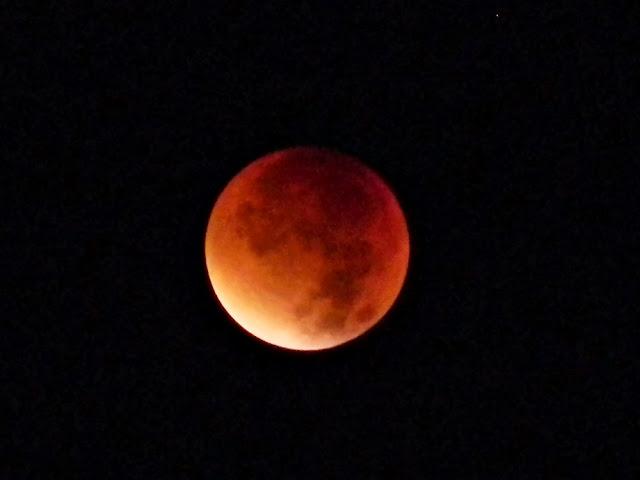 pogodna noc, zjawiska astronomiczne, Księżyc, zaćmienie księżyca