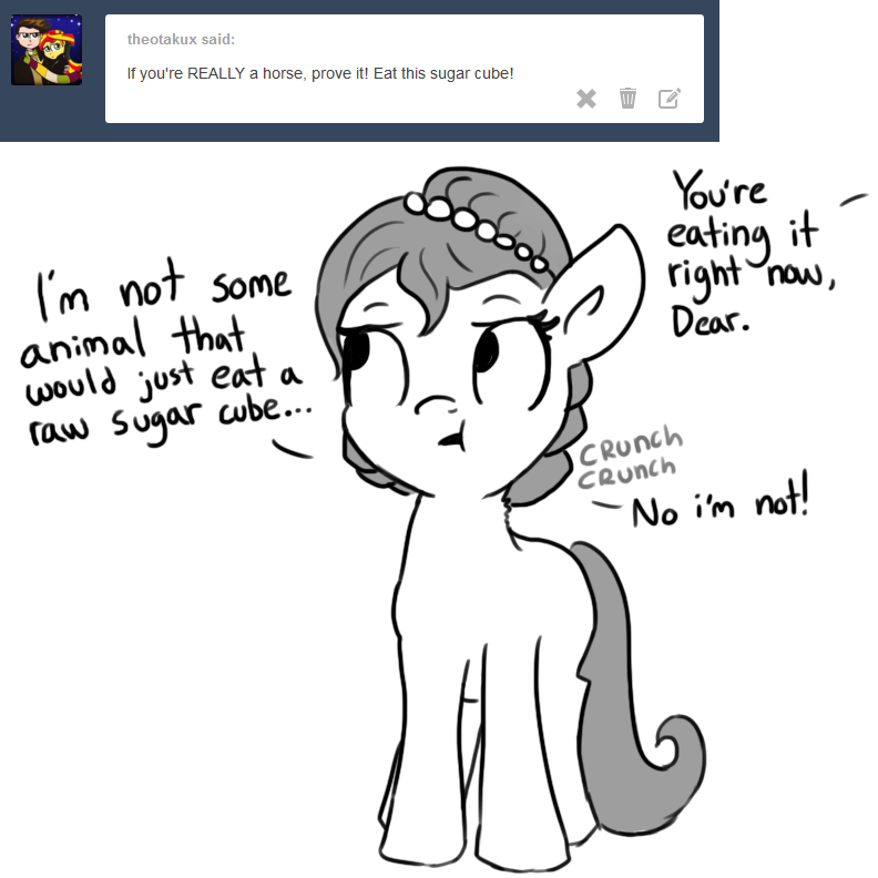 Tumblr Spotlight The Horse Wife