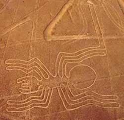 Figura de una araña en la Línea de Nazca