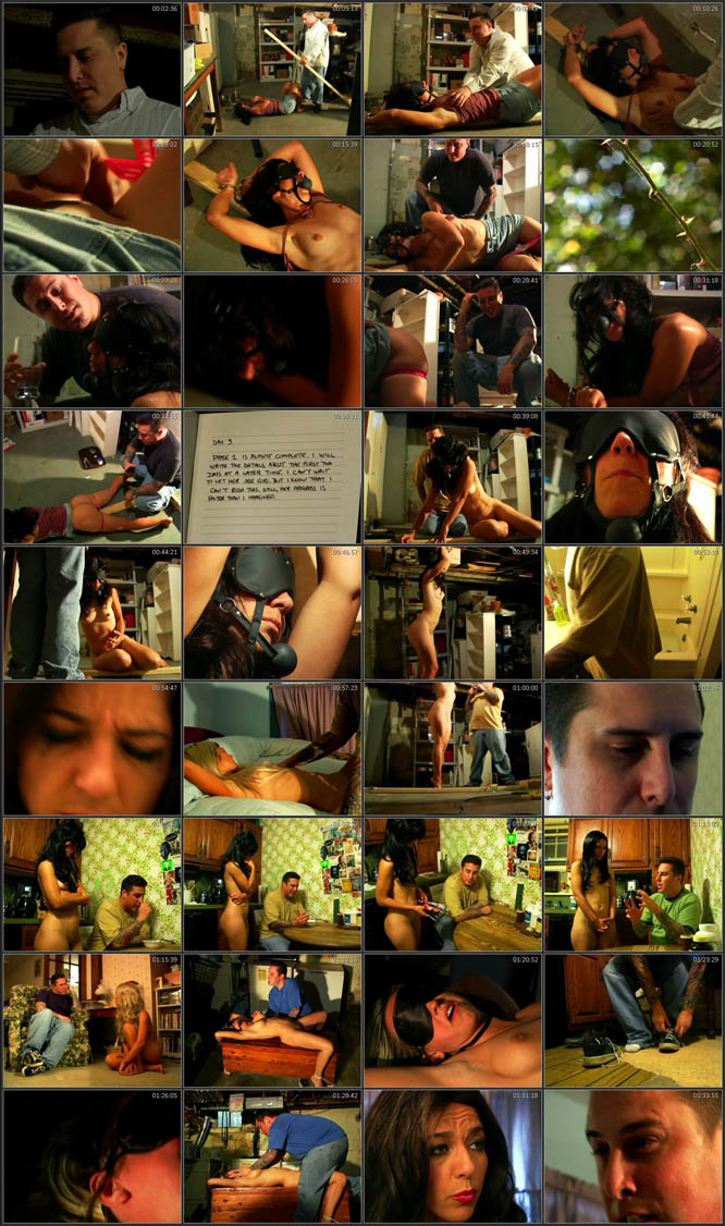 Breaking Her Will 2009 DVDRip 400MB Screenshot