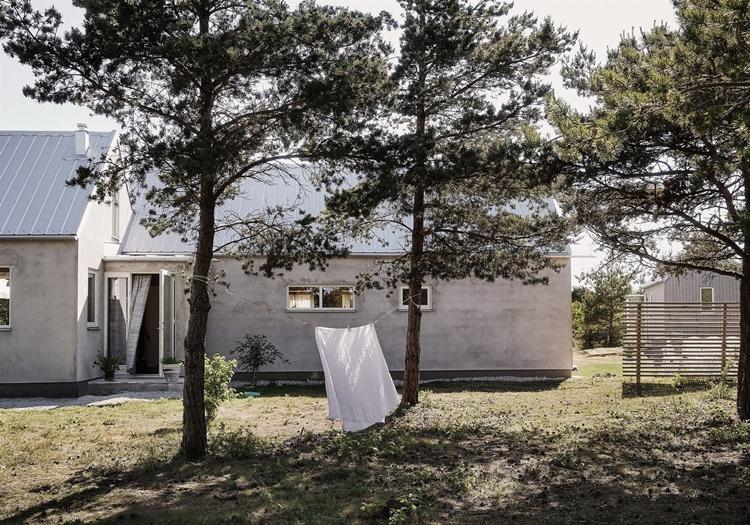 casa-campo-gris-arboles-pino-cemento-sabana-blanca-decoracion-nordica-estilo-nordico-escandinavo