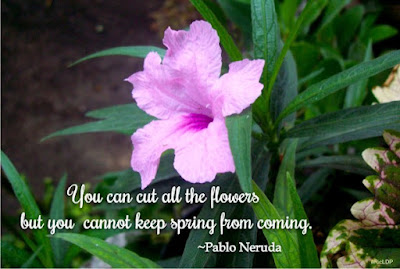 You can cut all the flowers but you cannot keep spring from coming. ~Pablo Neruda