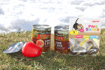 Comfy Snacky Strawberry, Comfy Plug Snack oraz karma mokra Evanger's - recenzja