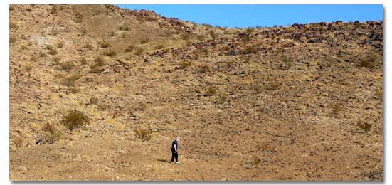 Tìm kiếm trên sa mạc