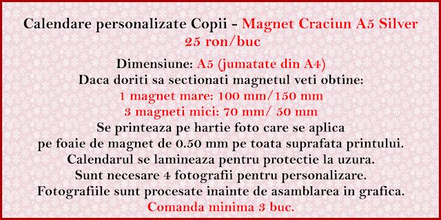 calendar magnetic Craciun SILVER