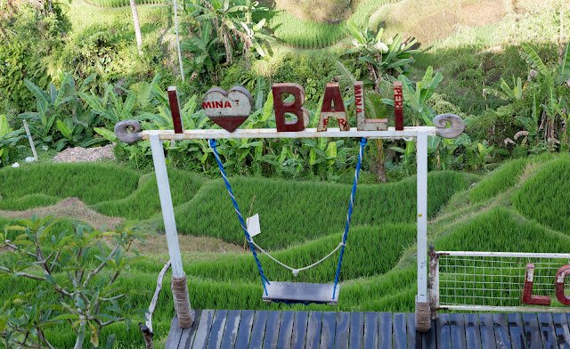 Ubud Bali Things to do tegalalang rice terrace
