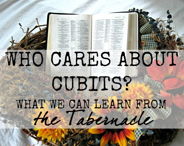It's really tempting to skip over those insane, confusing details in the Bible. Who gives a rip about cubits, anyway? But when we really dig in to the truth of God's Word, we find many hidden gems. Here's what we can learn from all those details in the Bible about the Tabernacle!