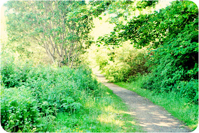 Old railyway line - Peterhead