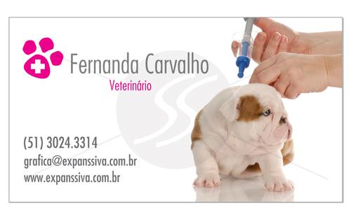 cartoes de visita veterinarios 14 - 15 lindos Cartões de Visita de Veterinários