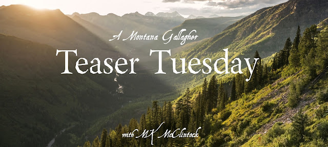 Teaser Tuesday with MK McClintock
