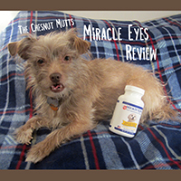 Miracle Eyes review