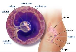 Langkah menggugurkan kandungan di general klinik aborsi