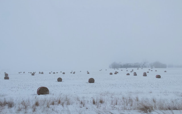 Winter Fields in Iowa