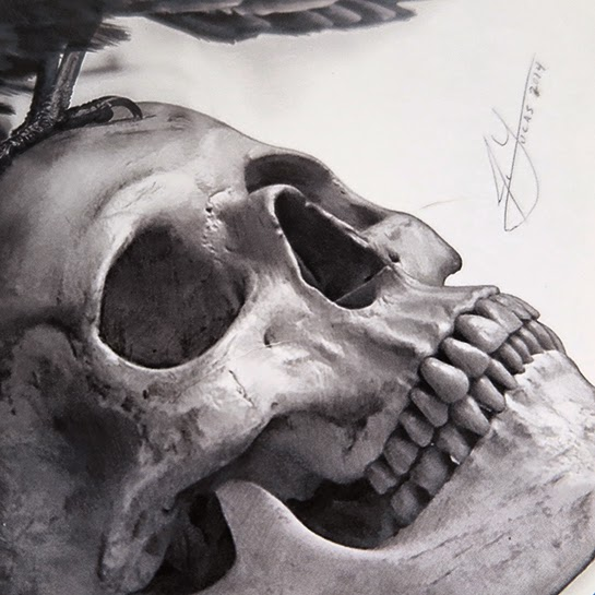 17-The-Raven-and-The-Skull-Julio-Lucas-Experimenting-with-Photo-Realistic-Drawings-www-designstack-co